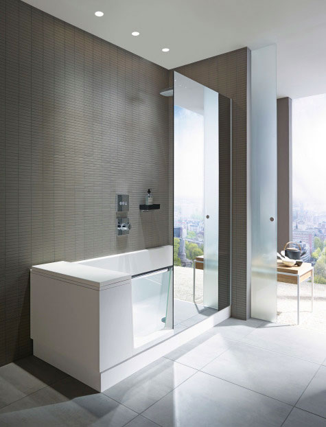 Elegant Shower + Bath